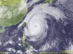 Typhoon (22).jpg