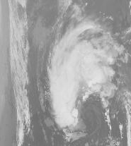 File:Subtropical Storm One of 1979.JPG