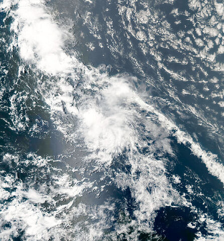 File:Tropical Storm Colin aug 3 2010 1645Z.jpg