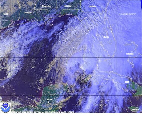File:Tropical Storm Mitch.jpg