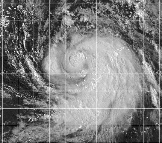 File:Typhoon Olga 1999.jpg