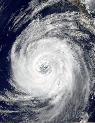 File:Hurricane Lane of 2000.JPG