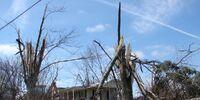 Tornado outbreak of November 24, 2015
