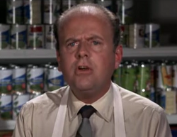 Dick Van Patten as Grocer