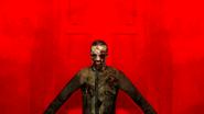 Gm zomb25v3