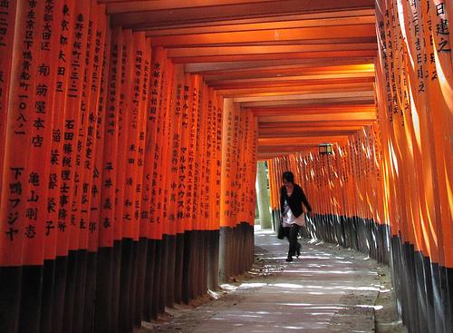 File:A fugitive presence under the torii.jpg