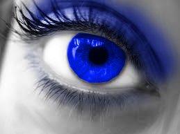 File:Eye678.jpg
