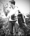 Seddie Jungle Romance