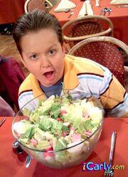 Gibby and salad