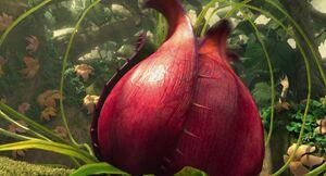 IA3 carnivorousplant-11
