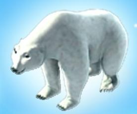 File:Polar bear.png