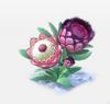 Decoration-Protea