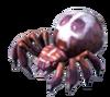 Spiderskull