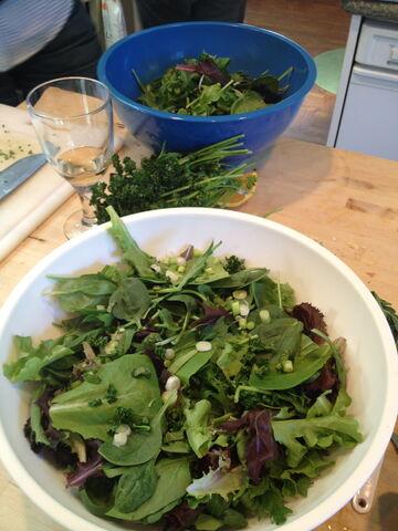 File:Sansa salad.JPG