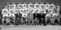 1958–59 Toronto Maple Leafs season