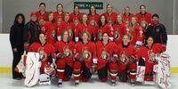 2008–09 CWHL season
