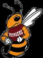 Concordia Stingers Buzz