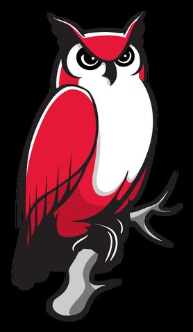 File:Keene State Owls logo.png
