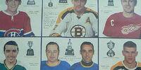 1968-69 NHL season