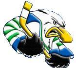Surrey Eagles