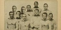 1909-10 AAHL season