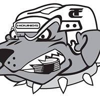 Traverse City Hounds logo