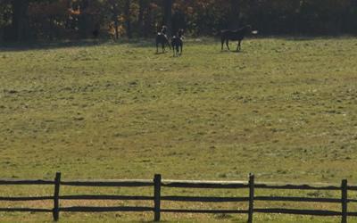 File:Kirtland Hills, Ohio.jpg