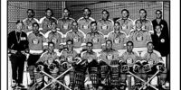 1968–69 Pittsburgh Penguins season