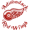Adirondack red wings 200x200