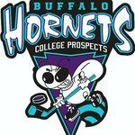 Buffalo Hornets logo