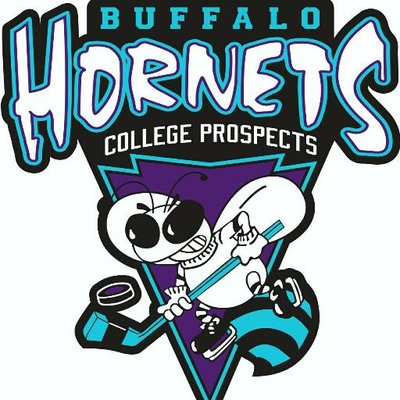 File:Buffalo Hornets logo.jpg