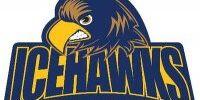 Delta Ice Hawks