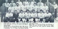 1976–77 Minnesota Fighting Saints season