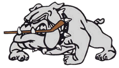File:Dunnville Terriers.png