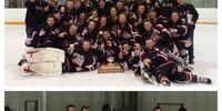 2015-16 SVHL Season