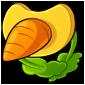 Carrot Pacifier