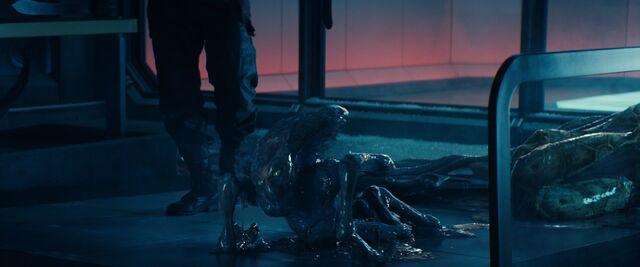 File:Alien outside.jpg