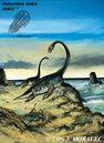 Plesiosaurus - Jurassic reptile