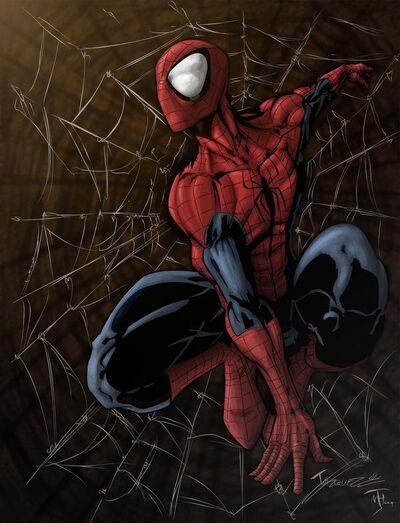 1853982-spider man colored by niggaz4life super