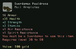 Swordsman Pauldrons