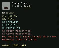 Saucy Shoes