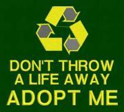 File:Adoption.jpg