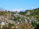 Kalimpongtown