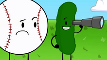 12 Pickle