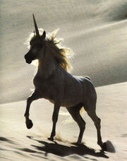 Unicorn-1-