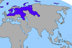 Sibir Map