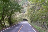 Base of Momiji Line