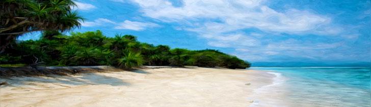 Banner---tropical-coast3