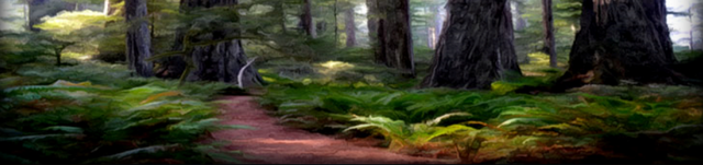 File:Evergreen Trail.png
