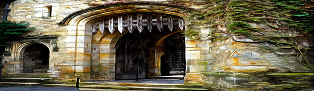 File:Banner---Aseridith-Keep-Gates.jpg